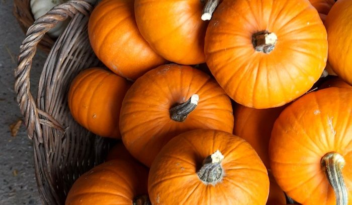 Pumpkin-Labeling-EU